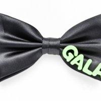 Gala 2014 in Mondo Verde